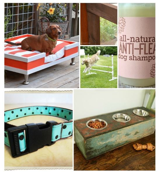 16 super cool totally do able diy dog projects pawbuzz for Super cool diy projects