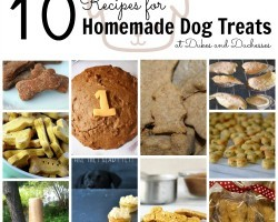 [Recipe] 10 Awesome Homemade Dog Treats Recipes