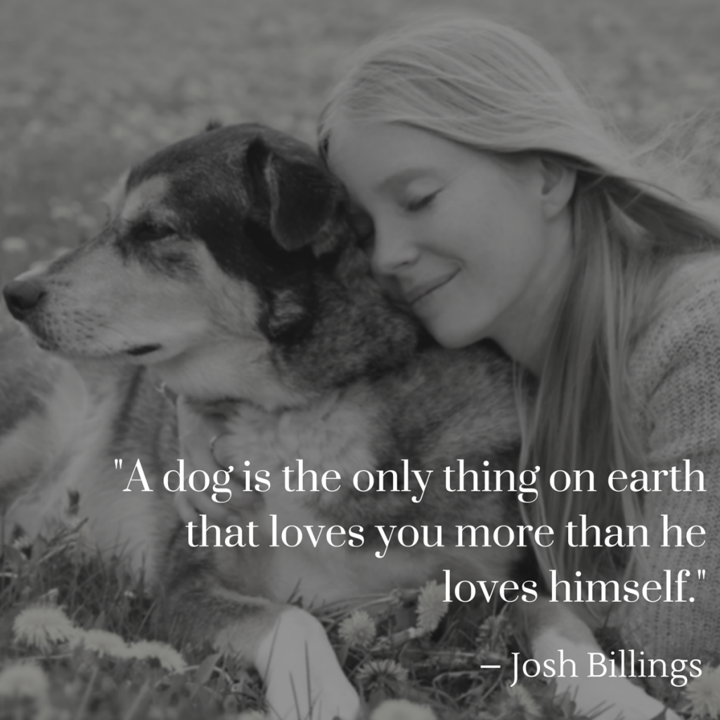 a dog is the only thing on earth that loves you more than he loves himself – Josh Billings