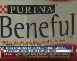 Lawsuit Claims Purina's Popular Beneful Dog Food Is Hurting And Killing Dogs