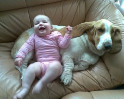 Top 10 Reasons Why Dogs Make The Perfect Babysitter
