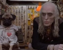 17 Must Watch Movies/TV Shows For All Pug Lovers