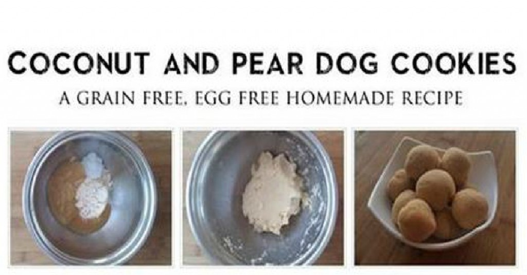 coconut and pear dog cookie recipe