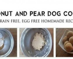 [RECIPE] Super Simple Grain Free, Egg Free Coconut and Pear Cookie for Dogs