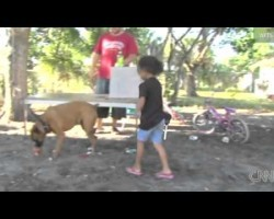 Dog Saves Family From Gunmen… You Won't Believe This Story!