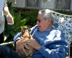 Grandpa Surprise Gift… A Wrinkly, Little English Bulldog Puppy!!