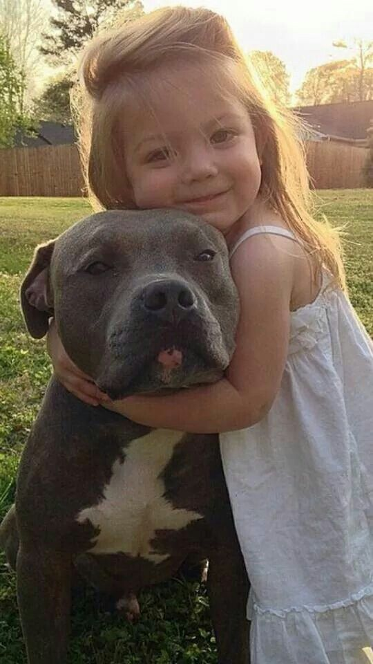 pit bull kid girl friends