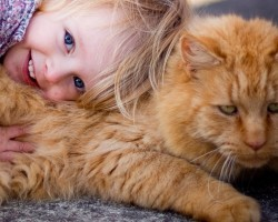 8 Reasons Why Every Kid Needs A Pet