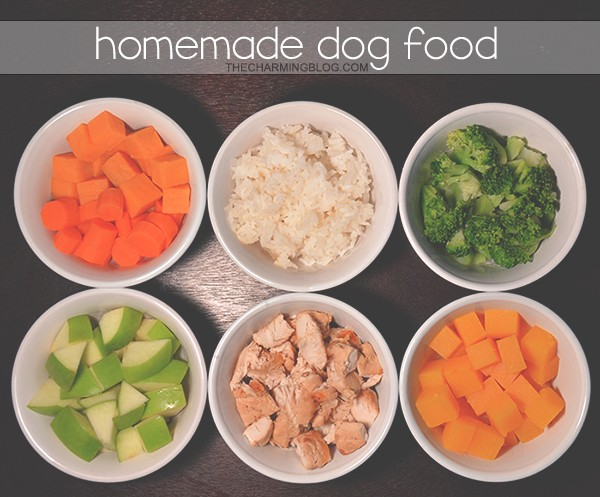 Diy Puppy Food Recipe