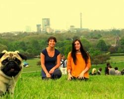 10 Pug Photobombs That Will Make You Smile, GUARANTEED.