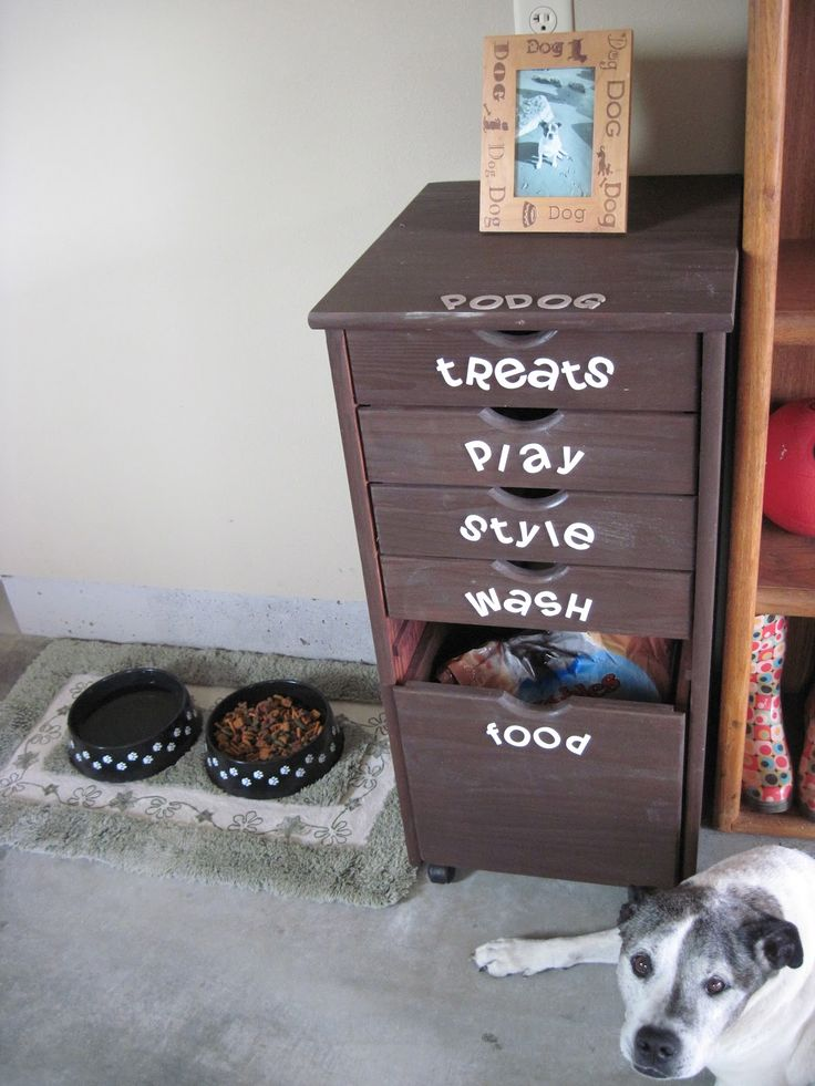 diy doggie station organization drawers
