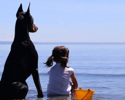 The Friendship Between A Girl And Her Doberman Pinscher Will Melt Your Heart