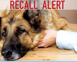 BREAKING NEWS: Three Types of Pet Food Recalled
