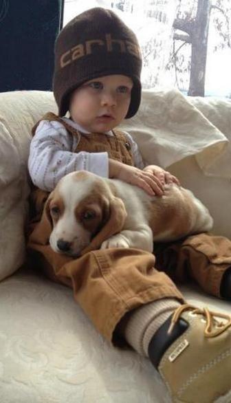 beagle best friend
