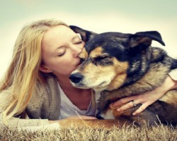 20 Things All Dog Owners Must Never Forget. The Last One Brought Tears To My Eyes…