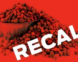 RECALL ALERT: Variety of Dog Foods From This Well Known Brand Recalled