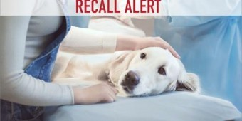 BREAKING NEWS: Leading Brand Issues Pet Food Recall