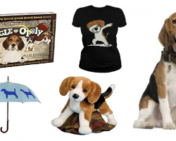 20 Items That All Beagle Lovers Need To Have
