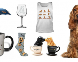20 Items That All Cocker Spaniel Lovers Need To Have