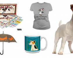 20 Items That All Jack Russell Lovers Need To Have
