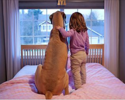 20 heartwarming photos that prove why all kids should grow up with a dog
