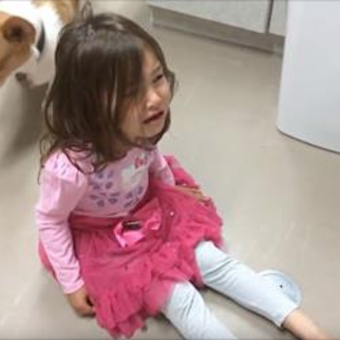 Corgi Hears Little Girl Having A Tantrum And Does The Sweetest Thing Ever