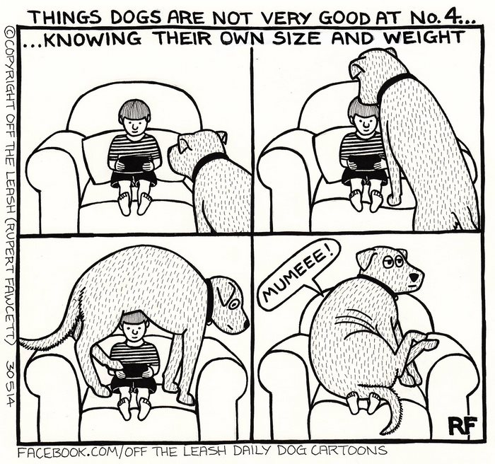 10 Hilarious Comics About Life With Dogs By Off The Leash