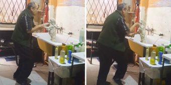 World's Sweetest Groomer Caught Dancing With A Client's Dog