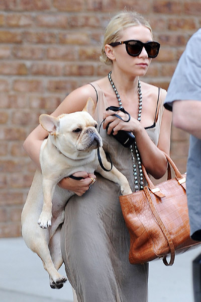 Ashley Olsen dog