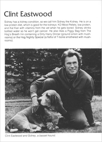 Clint Eastwood with basset hound