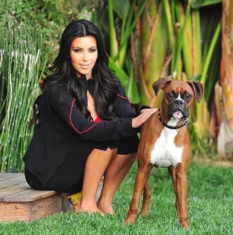 Kim Kardashian boxer