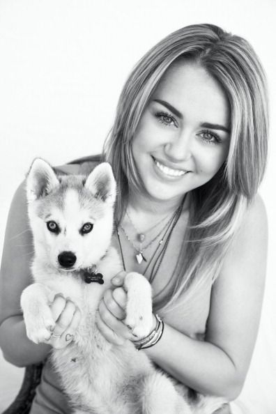 Miley Cyrus and Siberian Husky
