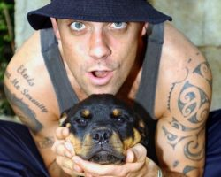 6 Celebrity Rottweiler Owners