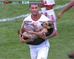 Dog Interrupts Soccer Game And That's When The Announcer Says Greatest Thing Ever