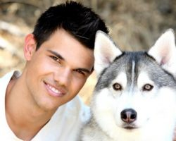 10 Celebrity Husky Owners