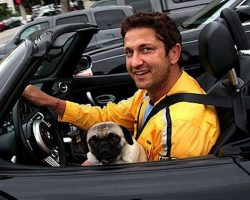 24 Celebrity Pug Owners