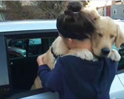 13 heartwarming photos of dogs hugging their humans