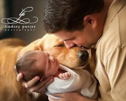10+ Beautiful Photos Capturing Tender Moments Between Dogs And Their Young Families