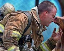 10+ photos of firefighters saving animals that will warm your heart