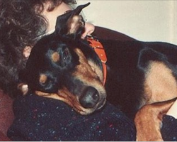 24 Dog Breeds That Are Extra-Loyal