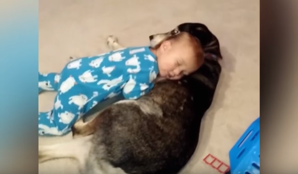 Baby Boy Is About To Knock Out But Mom S Heart Melts When