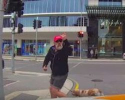 Angry Pedestrian Gets Dose Of Instant Karma