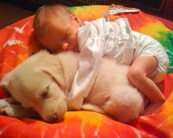 25 adorable photos that prove every kid should grow up with a dog