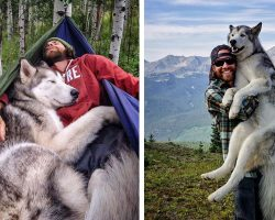 Man Takes His Wolfdog On Epic Adventures Across America's Most Gorgeous Locations