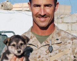 Soldier Undertakes Top Secret Mission To Get Stray Puppy Back Home With Him
