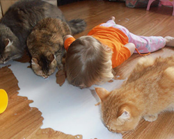 15 confused kids who hysterically think they are pets