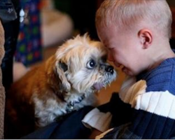 25 Photos That Show Why Every Child Should Have a Pet
