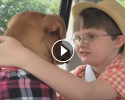 Mom Brings Home A Rescued Pit Bull. Now Watch What Happens When He Meets Their Autistic Son…