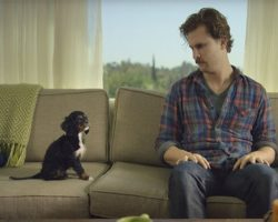 Adorably Baffled Man Bonds With His New Puppy