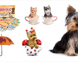 20 Items That All Yorkshire Terrier Lovers Need To Have
